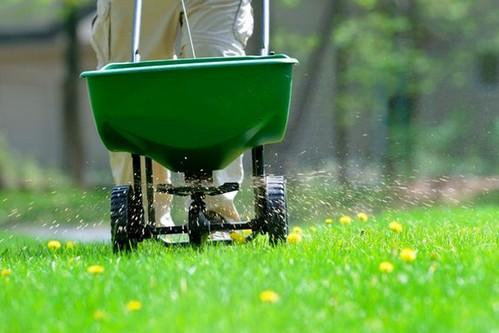 Удобрения для газона своими руками 121